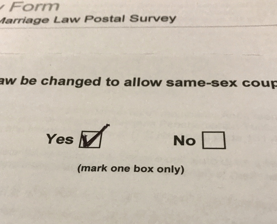 I voted yes